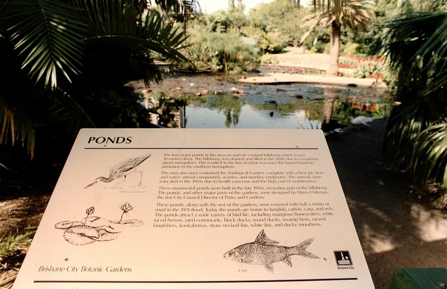 BCC City Gardens Ponds
