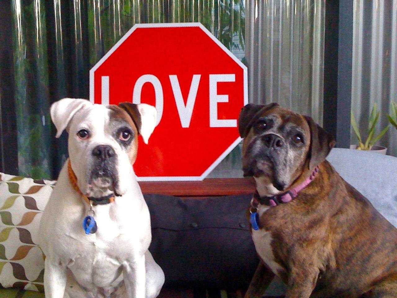 Love Gem & Charlie.JPG